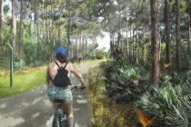 Miami-Dade construirá el ambicioso parque público Ludlam Trail