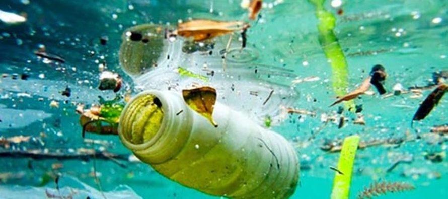 Miami Beach lanza la iniciativa Free Plastic para ayudar al medio ambiente