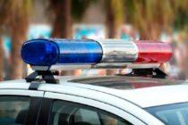 Perro policía recibe disparo en centro comercial de Palm Beach