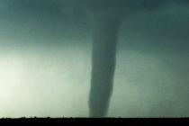 80 casas móviles golpeadas por tornado en Lake Wales