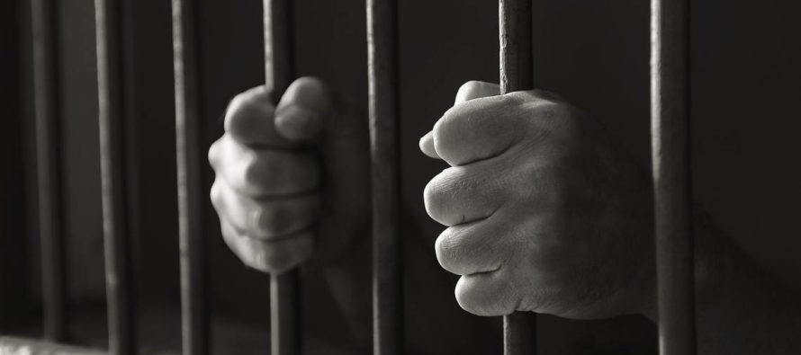 Condenan a 10 días de cárcel a hombre que amarró a un tiburón a una lancha rápida hasta su muerte