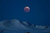 No te olvides: este 20 de enero llega la SuperLuna de sangre del lobo, el extraordinario eclipse se mantendrá por una hora