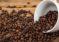 60 % de las especies de café están en peligro de extinción