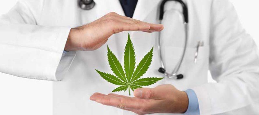Legisladores de Florida impulsan reformas a la marihuana medicinal y recreativa