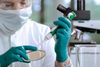Desarrollan potente químico capaz de frenar virus del Zika y la gripe aviar