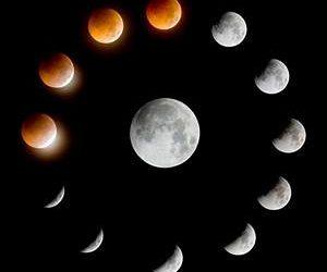 Mañana, la influencia de la Luna según su signo