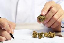 Médicos de Florida etiquetan a un paciente con epilepsia como «drogadicto» por consumir cannabis