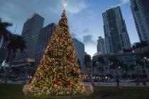 ¡Cuenta regresiva! Hoy será el encendido del Árbol de Navidad en Bayfront Park