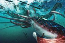 Edith Widder habló sobre su experiencia al captar un calamar gigante en las profundidades del golfo de México