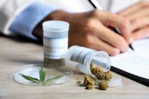 Proceso de obtención de marihuana medicinal en Florida ha mejorado en casi 70%