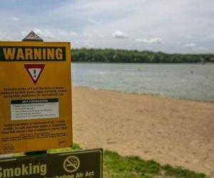 Avisos sobre aguas residuales en las playas de Florida se hacen más frecuentes