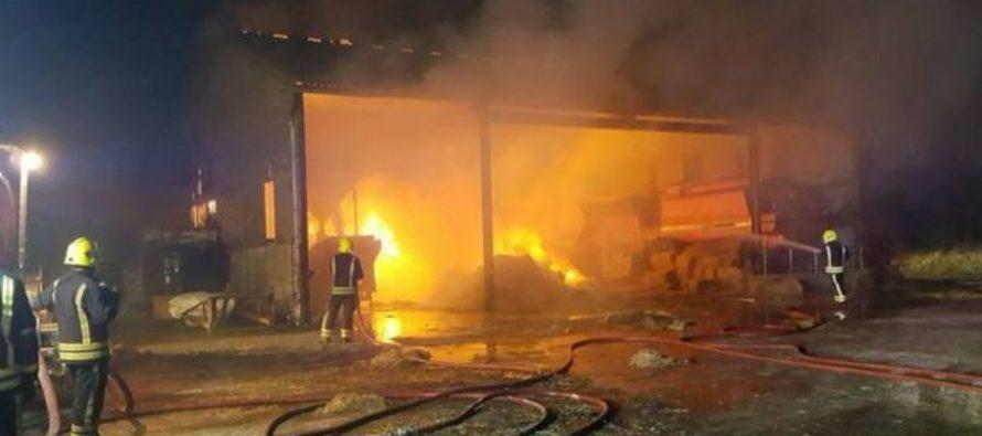 Incendio en un establo en Wellington provocó la muerte de tres caballos