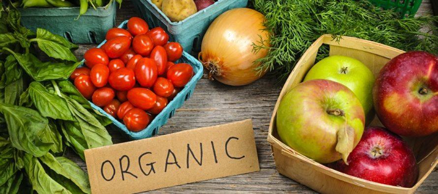Estudio demuestra que los alimentos ecológicos no son más sanos