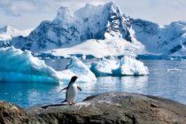 Registran lluvia en la Antártida a temperaturas gélidas