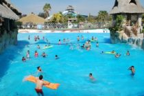 Aumentan los casos de personas afectadas por parásito fecal en Florida propagado en piscinas públicas