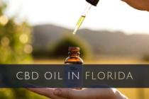 CBD de la marihuana: ¿Hasta dónde es legal en Florida?