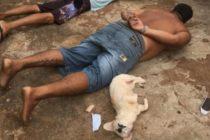 """¡Perra fiel! Cachorrita """"se entrega"""" a la policía junto a su dueño acusado de tráfico de drogas"""
