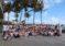¡Participa! Caminata global de mentoría de Vital Voices será en Miami Beach