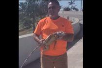 ¡Fe en la humanidad! Sujetos arriesgaron sus vidas para salvar a una iguana que quedó atrapada en una autopista de Florida +Vídeo