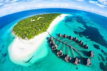 Por cuidar tortugas vive en hotel paradisíaco en las Islas Maldivas