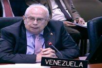 Gustavo Tarre ante la OEA: Venezuela volverá al sistema interamericano de derecho