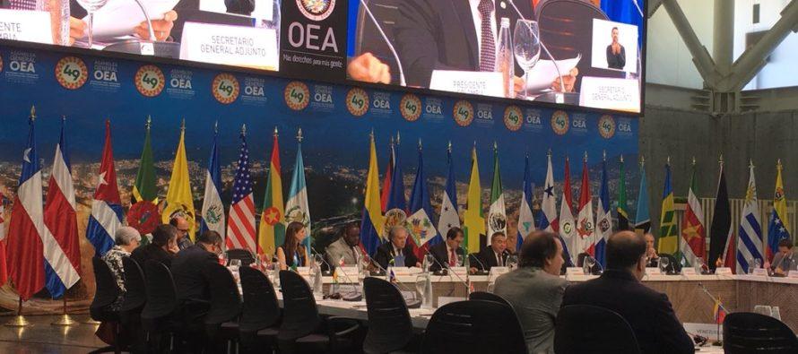 Representantes de la sociedad civil alzaron su voces en el marco de la 49 Asamblea de la OEA