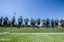 Dolphins entran en una nueva etapa de la temporada