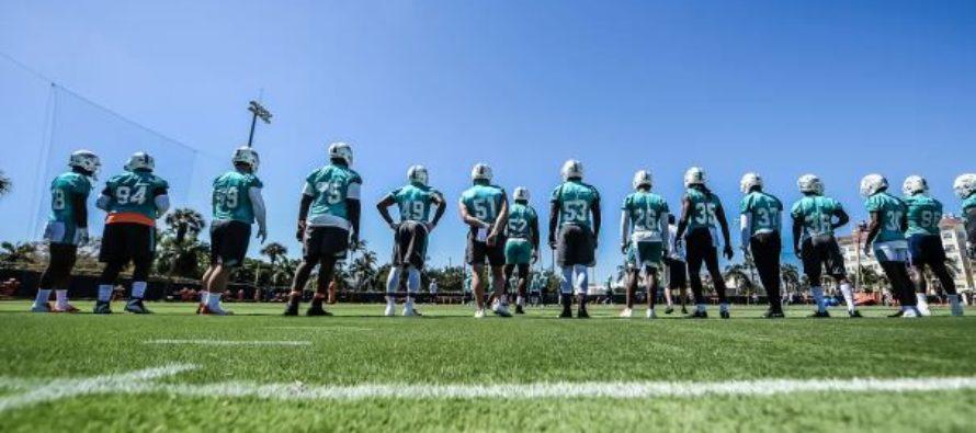 Dolphins iniciaron sus entrenamientos para la temporada 2019