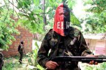 20 años de prisión a colombiano por vender armas a grupo terrorista desde Miami