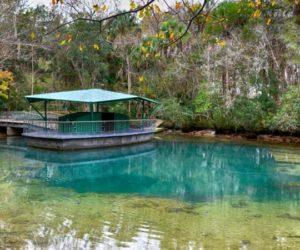 LLega el otoño y Florida se llena de opciones para disfrutarlo