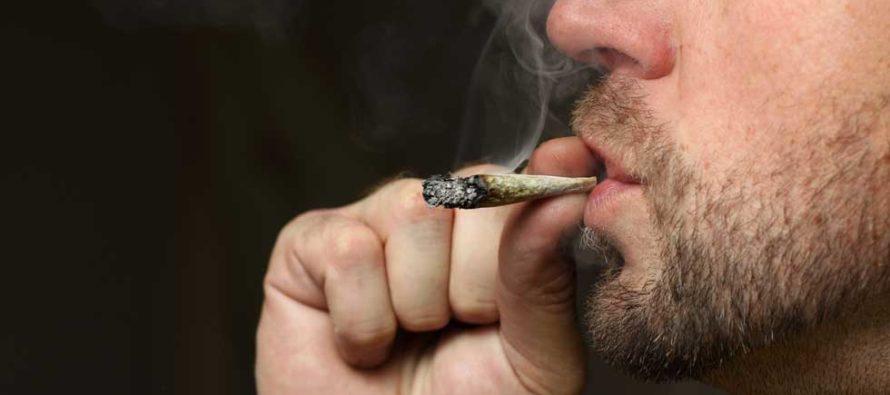 Muere Proyecto de Ley de Florida para legalizar el consumo de la marihuana recreativa