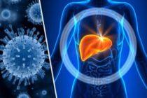 ¡Alerta! Aumentaron casos de hepatitis A en 10 condados de Florida