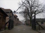 Estrenarán en Festival de Cine Judío de Miami documental del Holocausto