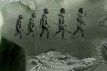 La evolución según Darwin: La revolucionaria teoría cambió nuestra comprensión del mundo