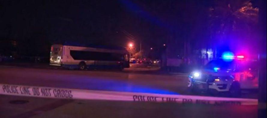 Herido hombre que fue atropellado por un autobús público en Liberty City