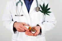 Vivero entra en litigio desea primera licencia de distribución de marihuana en Florida
