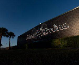 Marlins con nuevas expectativas para la temporada 2019