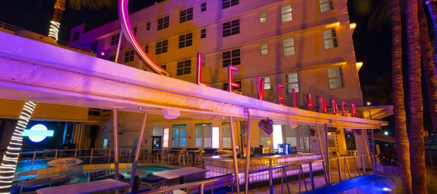 Conoce los hoteles y restaurantes que puedes ir con tu mascota en Miami Beach