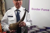 Condenan en Miami a irlandés por traficar un cáliz de cuerno de rinoceronte