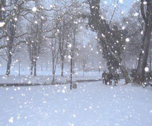 Ola de frío ártico congela dos tercios de Estados Unidos