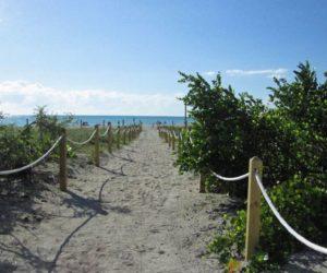 No se meta en el agua: Playas de Miami están repletas de bacteria fecal, según análisis