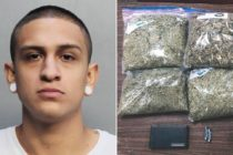 Policía de Florida detuvo a joven tras consumir marihuana medicinal en su auto