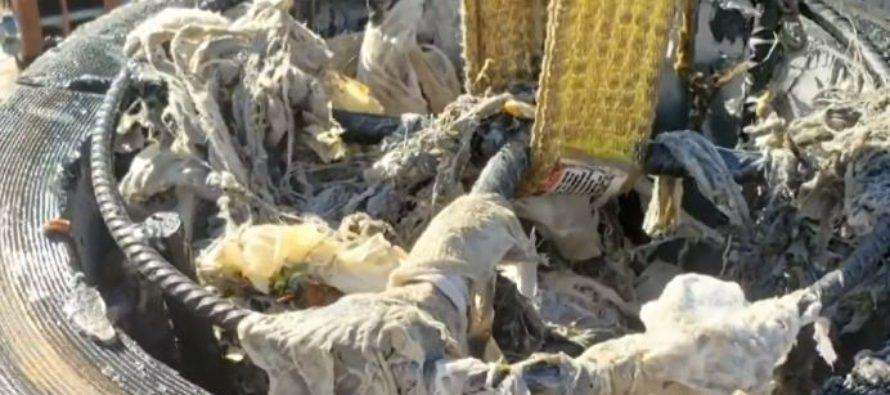 Toallitas desechables estan creando un grave problema en el alcantarillado de Miami-Dade