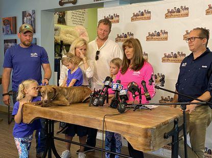 Perro milagroso encuentra un hogar en el sur de la Florida después del huracán Dorian - MiamiDiario.com