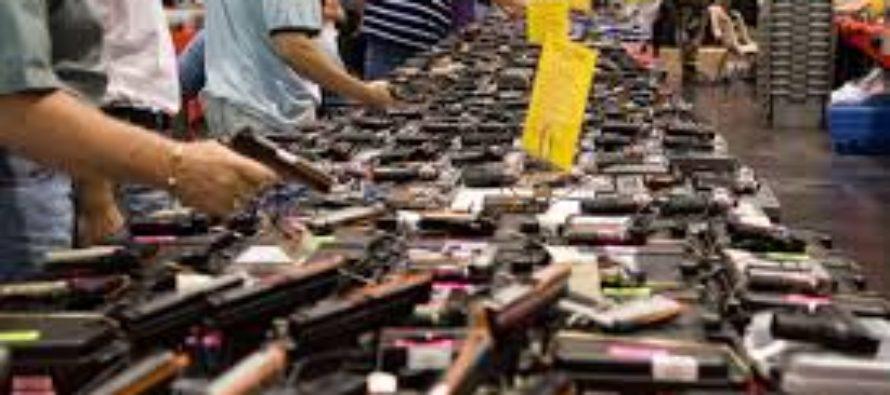 La ley de armas de Florida «bandera roja» se usó 3.500 veces desde el tiroteo en Parkland
