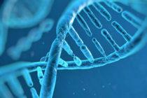 Información dígital del ADN es almacenada por científicos de Israel