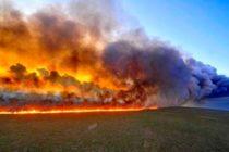 Desgarradoras imágenes de los incendios que arrasan con el Amazonas