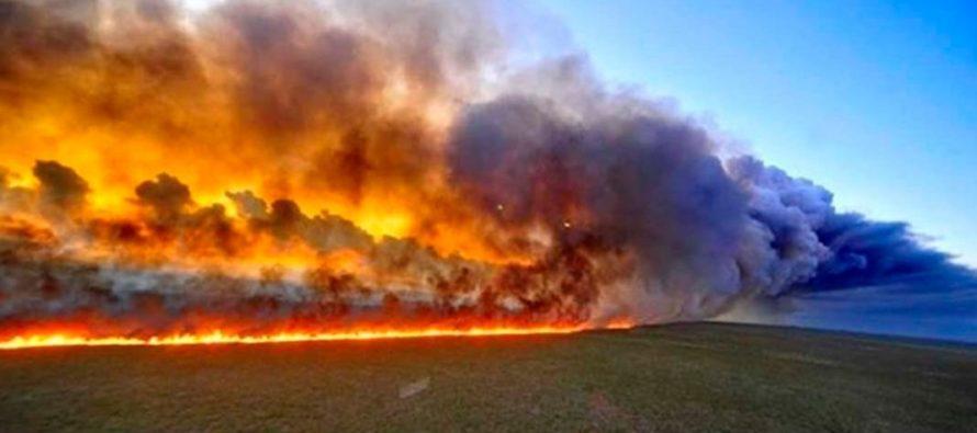 ¿Sabe por qué los incendios del Amazonas podría afectar al resto de continente? ¡Te lo contamos!
