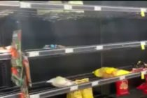 Floridanos continúan vaciando los estantes de las tiendas por temor al coronavirus