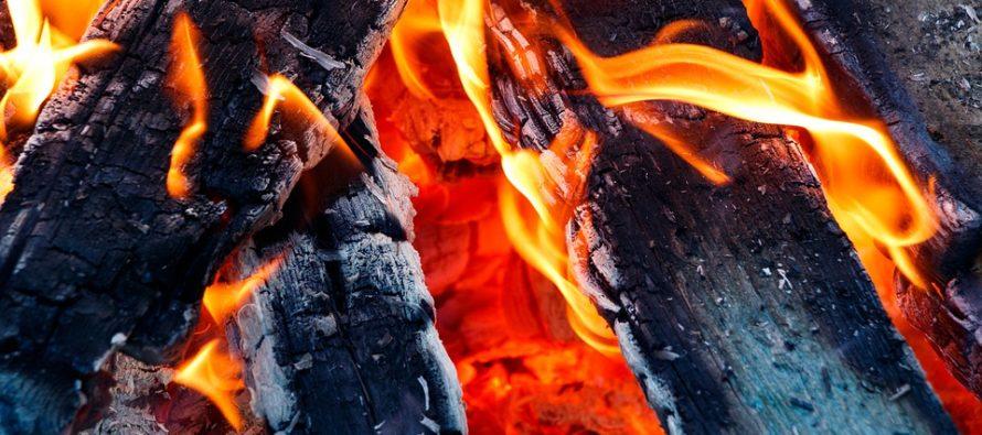 ¡Sorprendente! Tras ser golpeado por un rayo un árbol arde desde el interior de su tronco (Video)